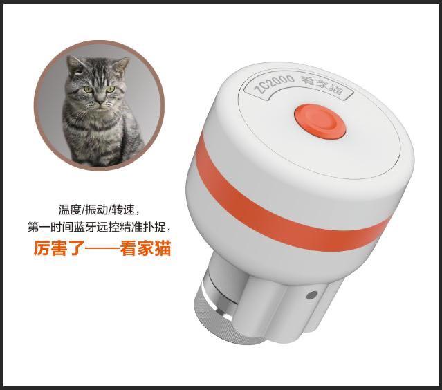 看家猫蓝牙测温测振传感器